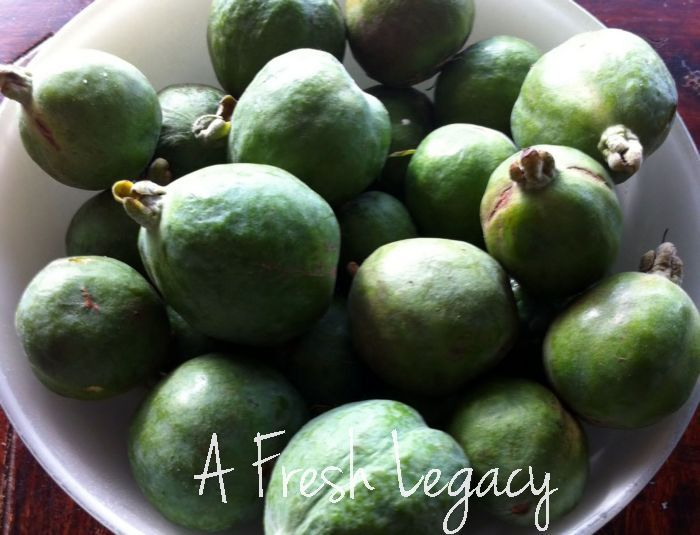 Feijoa Jam Recipe