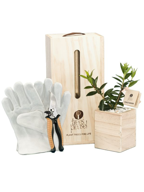 Secateurs and Leather gardening glove with living tree, delivered within NZ. www.nztreesplease.co.nz