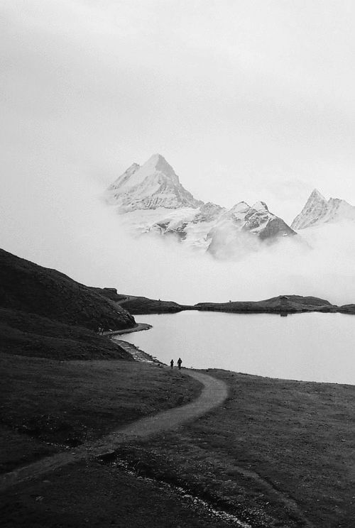 nature as the artist time stretches out before us and the signs of its passing are never far from view, Miyo Jergen 2014 photography , contemporary monochromatic landscape .
