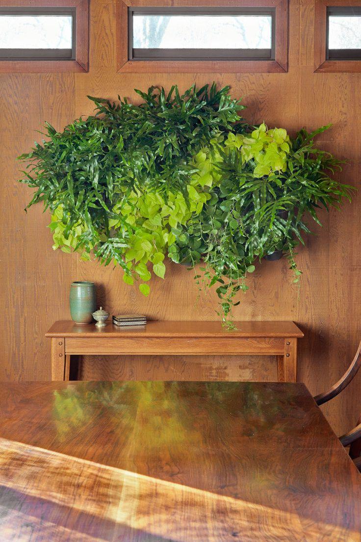 Aprenda a criar o seu próprio suporte para plantas: a manutenção é fácil e as plantas vão renovar as energias da sua casa!