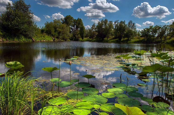 summer day by Victor Yastrebov on 500px