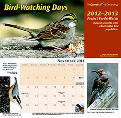 Visit the Cornell Lab of Ornithology website and sign up for a free bird watching calendar. While supplies last.