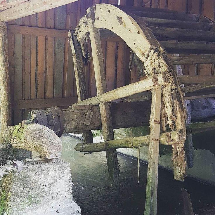 Posledny dreveny mly na Turci a fragment mlynskeho kolesa. #mlyn #ivancina #nasaobnova