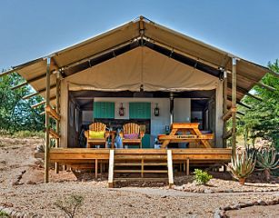 Beautiful tents at AfriCamps Klein Karoo in Oudtshoorn.