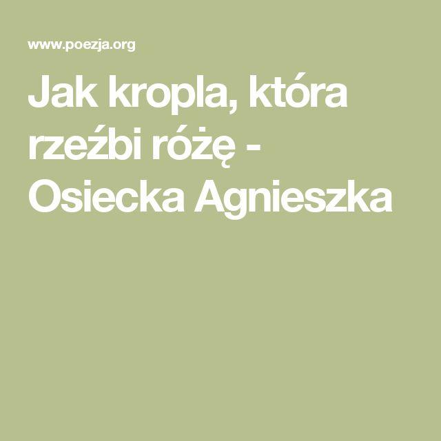 Jak kropla, która rzeźbi różę - Osiecka Agnieszka