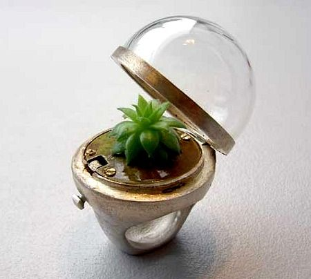 A greenhouse ring! Look at that cute little plant. I'd be too afraid I'd kill it to ever buy one.