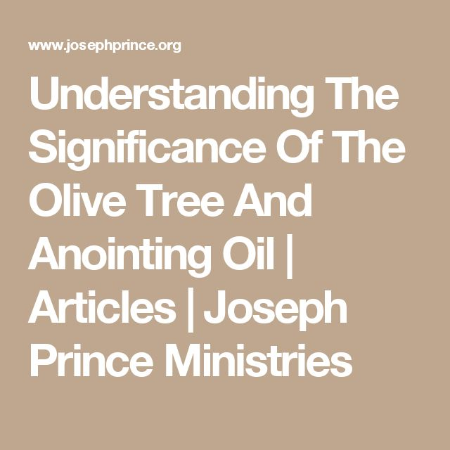 Understanding The Significance Of The Olive Tree And Anointing Oil | Articles | Joseph Prince Ministries