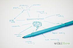 Make a Mind Map