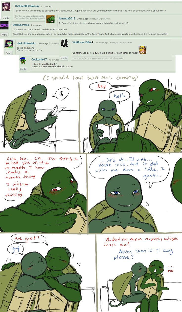 Ask the AU Turtles: 2 by 10yrsy on deviantART   leo and ...