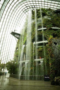 The Cooled Conservatories designed by Wilkinson Eyre Architects at the Gardens by the Bay tropical garden in Singapore have been awarded the World Building of the Year prize at the World Architecture Festival in Singapore)