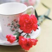 How to Decorate for a High Tea | eHow