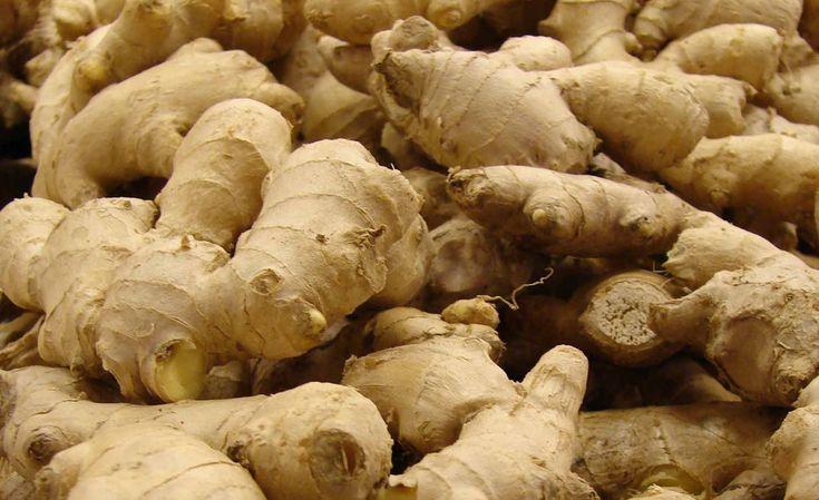 Plutôt que de gaspiller des restes de légumes et de plantes dont vous n'avez plus besoin, pourquoi ne pas les faire repousser ? DGS vous présente 10 plantes et légumes que vous pouvez replanter indéfiniment ! 1. Pommes de terre et patates douces Coupez les pommes de terre en morceaux relativement gros avant de les …