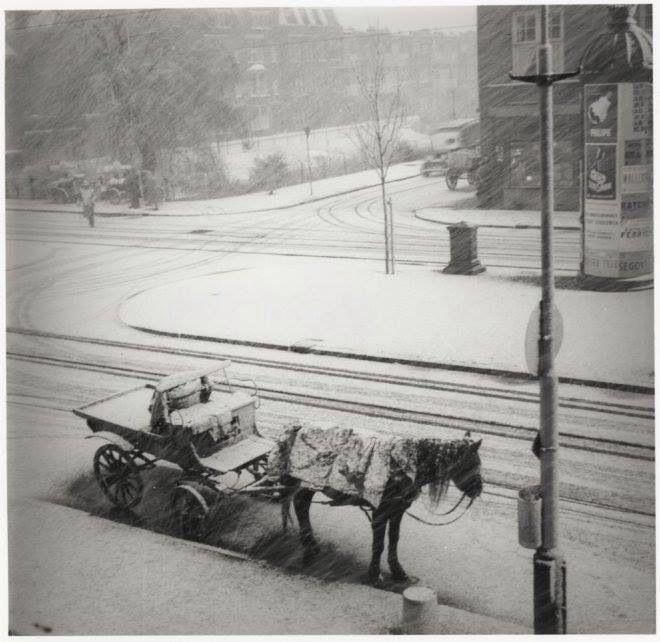 Laan van Meerdervoort/Valkenboskade, 1950. Het paard van de schillenboer in de sneeuw.