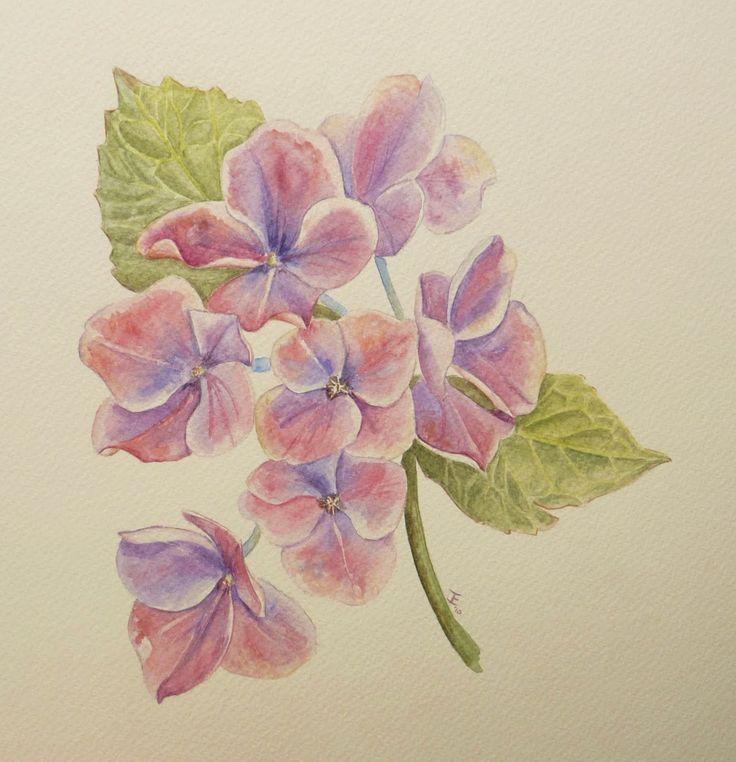witte achtergrond tekening bloemen - photo #46