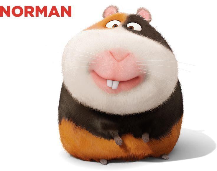Norman ideje legnagyobb részében az épület szellőzőrendszerében tévelyeg, és hasztalan próbál hazatalálni. Az agya akkora, mint egy borsószem, és csak a felét használja.