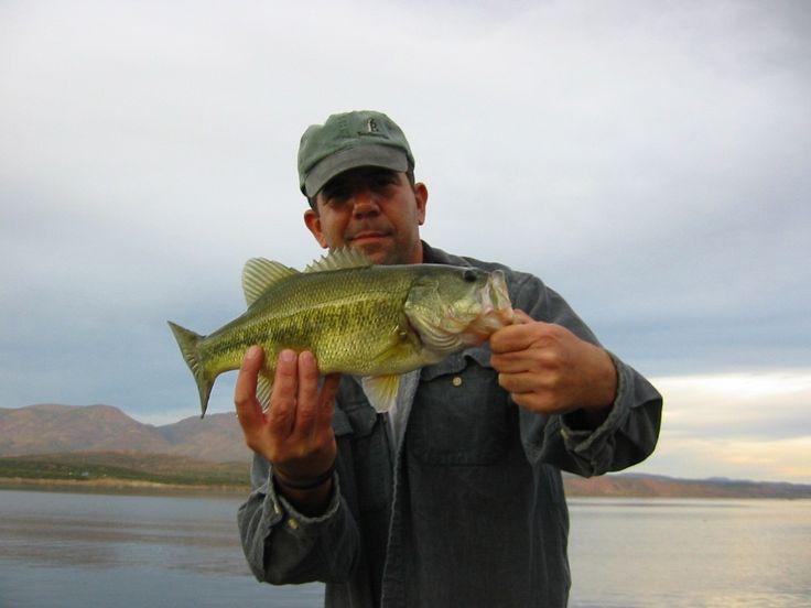 42 best oshkosh wisconsin images on pinterest oshkosh for Wisconsin fishing tournaments