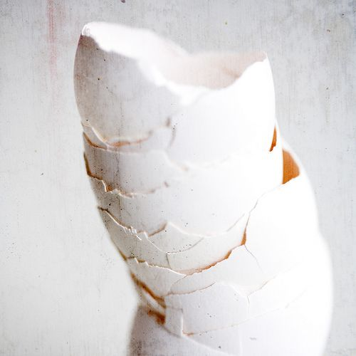 ♕ gorgeous still life of stacked egg shells