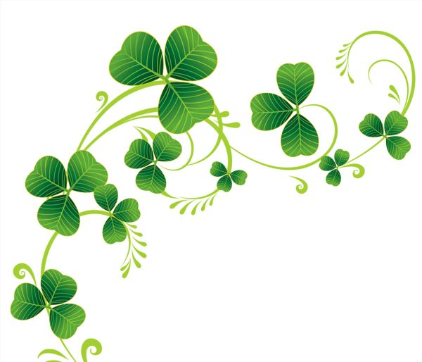 Transparent Shamrocks Decor PNG Clipart