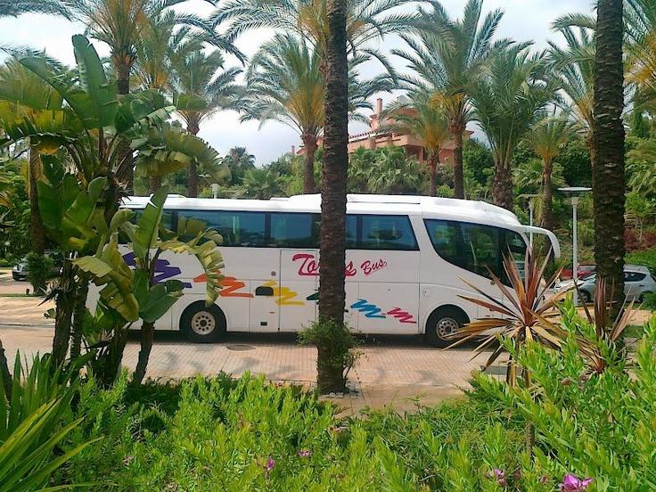 Bonita foto de un autocar de la empresa Torres Bus en Marbella