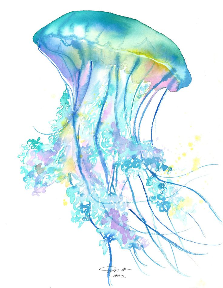 Original watercolor jellyfish study no. 4 painting by ...