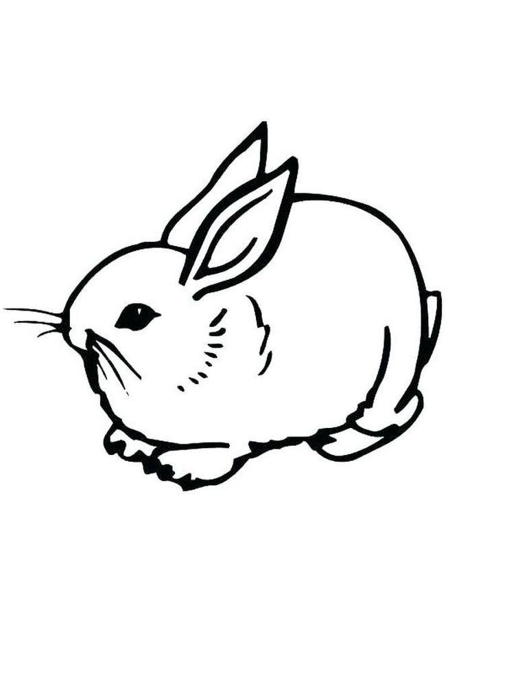 kaninchen malvorlagen für kinder im vorschulalter