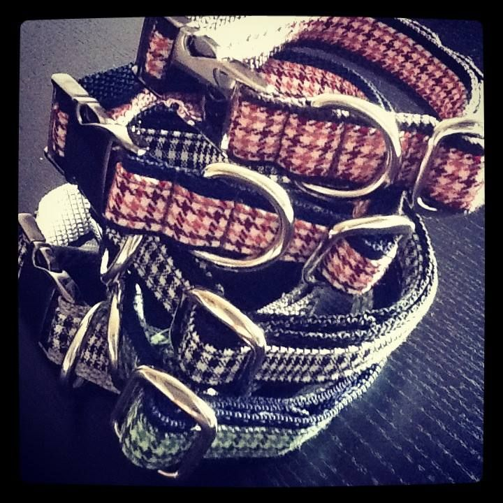 Collars matching with your raincoat and leash by Amici di Alia