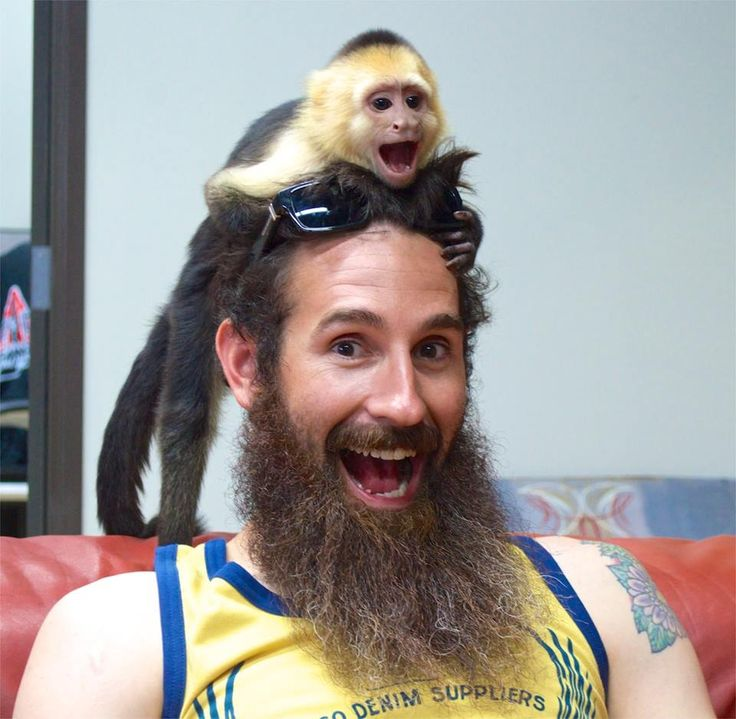 Aaron Kaufman from Gas Monkey  With his beard and a monkey
