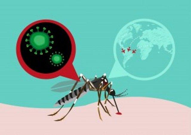 PBB imbau bandara tingkatkan pencegahan virus zika
