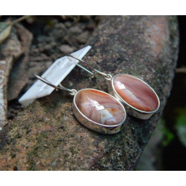 Large oval silver earrings