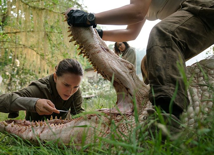 Watch Annihilation Full Movie - 2018 [[[[  Click Here     ]]]]] For Download  [[[[  Click Here   ]]]]] For Watching https://uploads.disquscdn.c...
