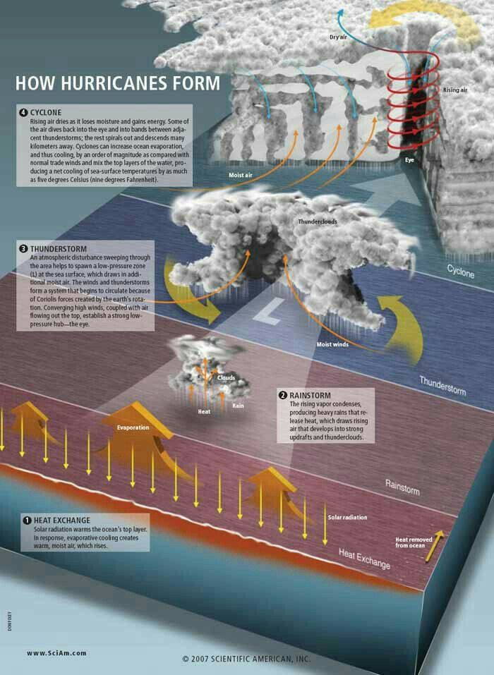 Pin By Jean Willis On Air Wind Hurricane Tornado In 2020 Weather Science Weather And Climate Geography Activities