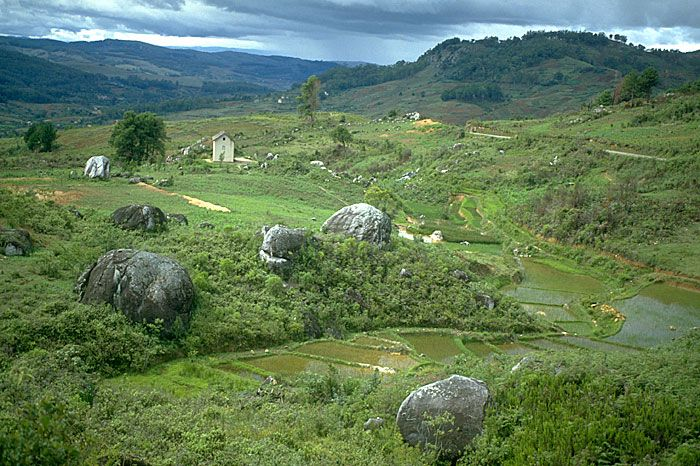 madagascar the green island Known as the green island, madagascar is famous for its variety of flora and fauna but it is also well known for its susceptibility to natural disasters every year, cyclones tear through the island.