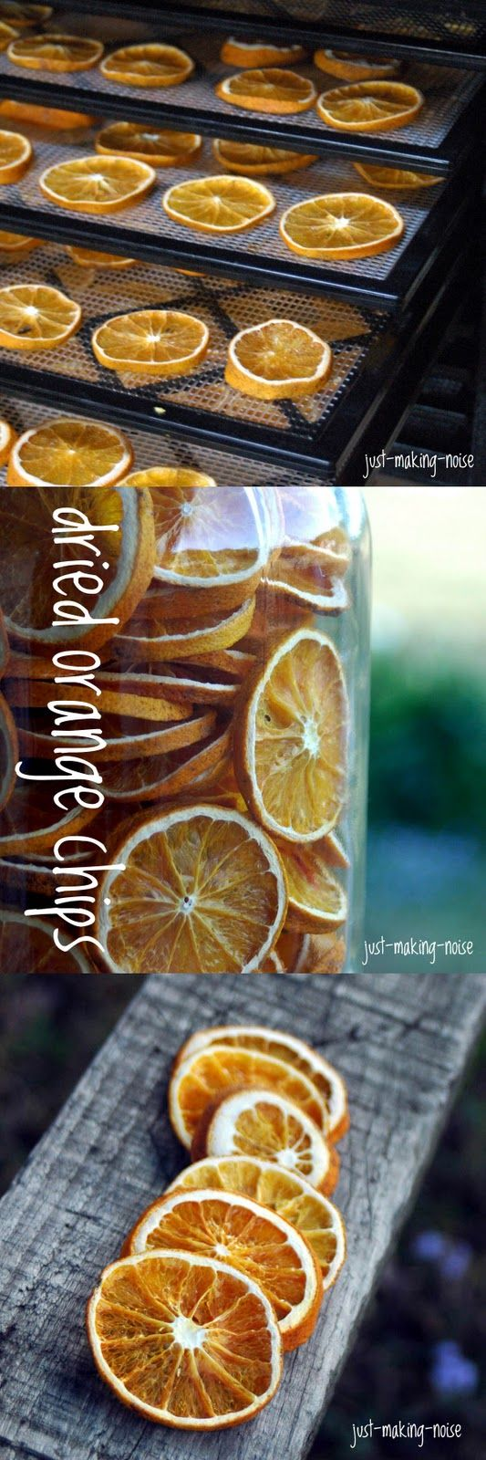 Crispy Orange Chips (a.k.a - Dehydrated Orange Slices) - great for garland, potpourri, food decor. The possibilities are endless!