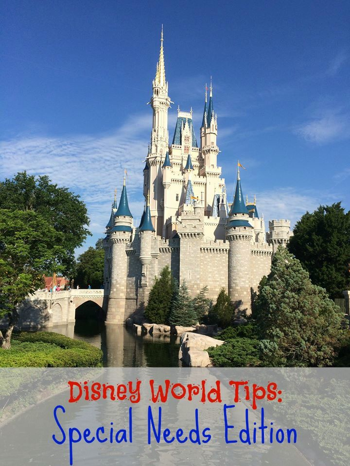 Don't go to Disney without these planning tips for your loved one with special needs