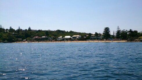 Shark bay,Sydney