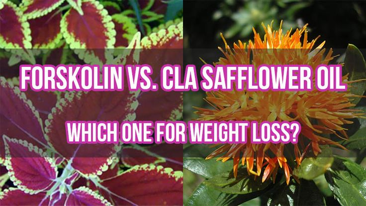 Forskolin Vs. CLA Safflower Oil: Which One for Weight Loss?