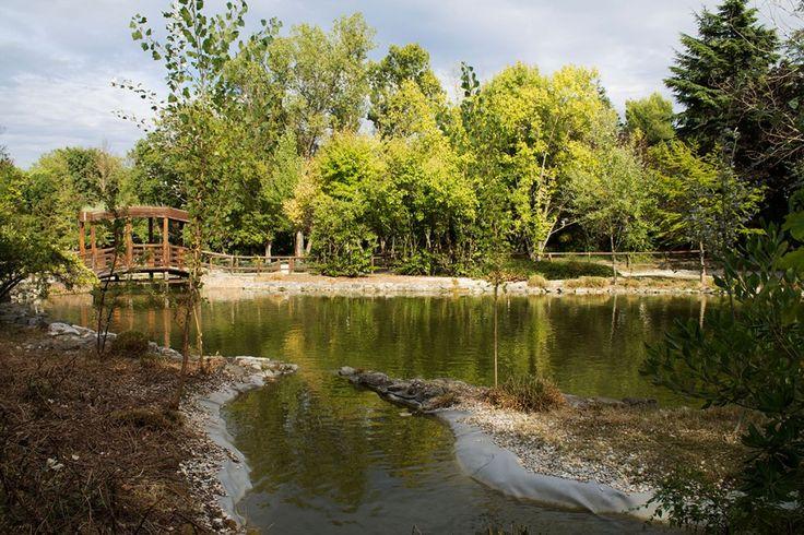 Laghetto Parco della Resistenza Riccione. http://www.riccionesocialclub.it/riccione-monamur/il-parco-della-resistenza