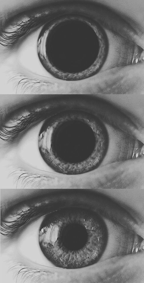 Eye, pupils, black and white, size, triptych, reflective ...Dilated Pupils Drugs Picture