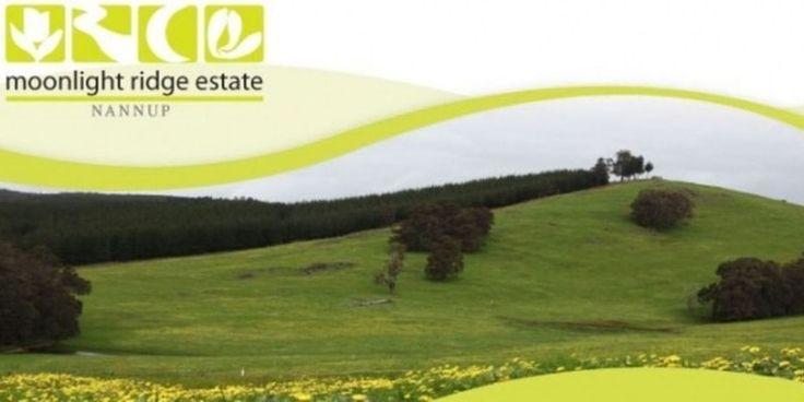 Real Estate Advantage #RealEstateAgencyinPerth, #RealEstateAgencybestdeals, #RealEstateWesternAustralia, #BuySellandRentHome, #BuyHome, #RentHomeinPerthAustralia, #SellHouseinAustralia.