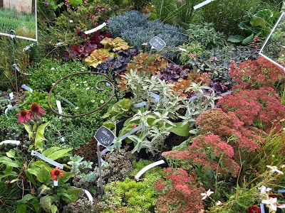 Jardin noble val in st antonin a plant and garden fair for Jardin noble val 2015