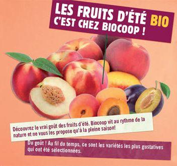 En juillet, nectarine, abricot, pêche et prune sont de saison !