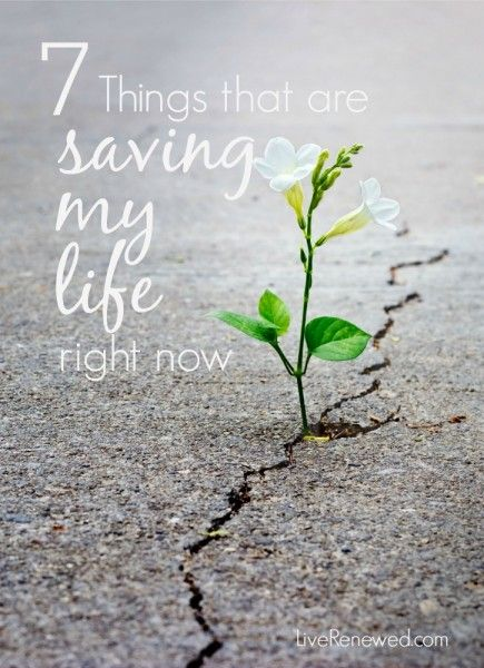 We all go through difficult seasons of life, heartache, grief, sorrow, pain -- but in the midst of those times we can find things that help to save our lives and give us life. Here's are some things that are helping me through a difficult time, hopefully they will be an inspiration to you.