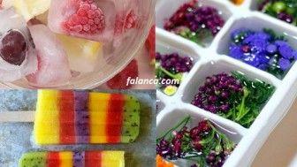 Meyveli buz kalıpları hazırlanışı