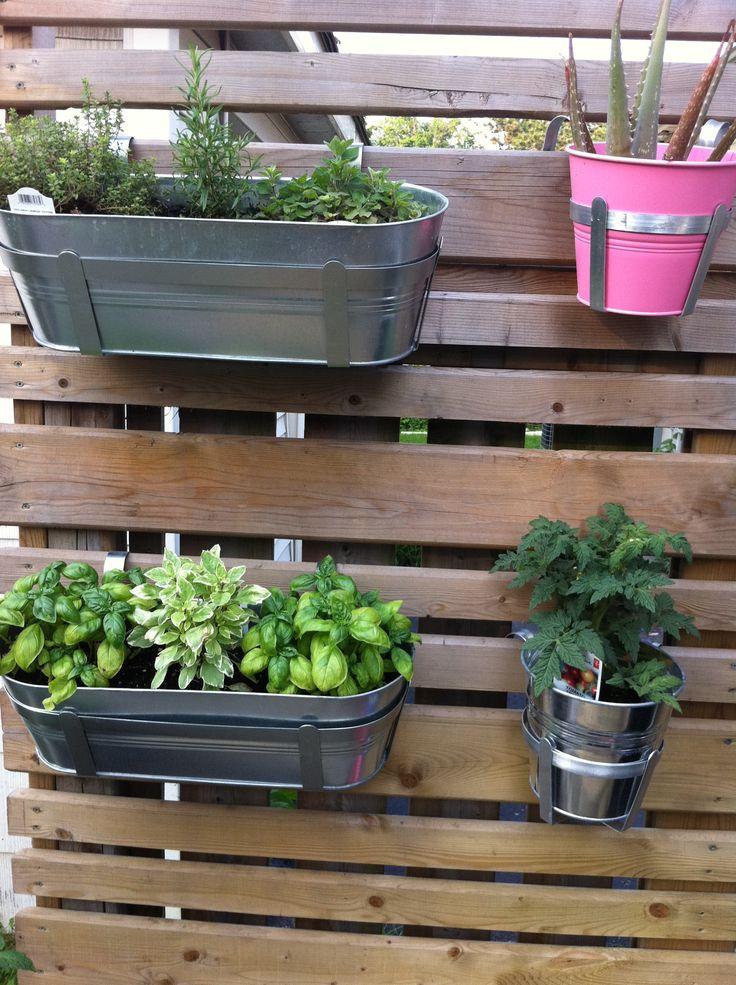 Best 25 Vertical Herb Gardens Ideas On Pinterest Wall