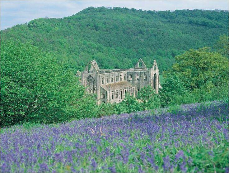 Abbaye de Tintern, Pays de Galles