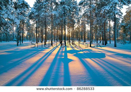 Winter Stock Photos, Images, & Pictures   Shutterstock