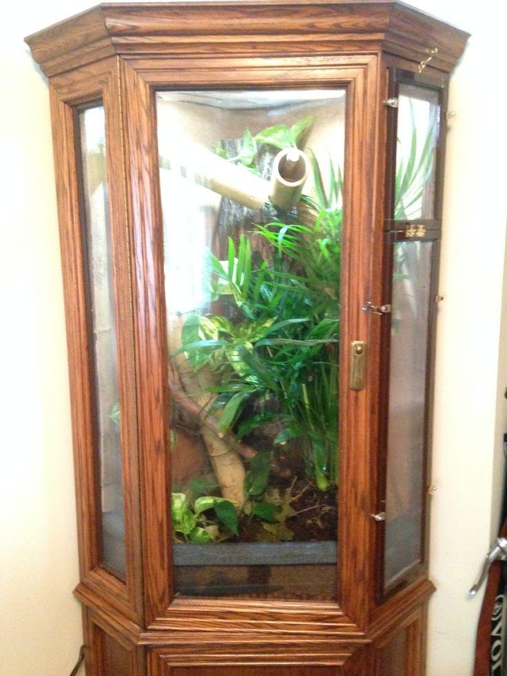 Diy gecko vivarium how to build gecko terrarium