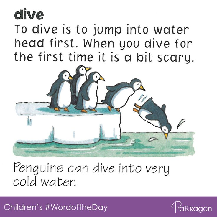 Today's Word of the Day for children is 'DIVE'. 'To dive is to jump into water head first. When you dive for the first time it can be a bit scary!'