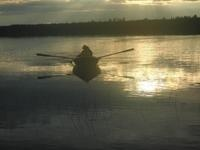 Taivalkoski,Soumi,Finland,wildlife,sunset