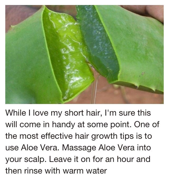 25 best ideas about natural hair growth tips on pinterest hair growing tips tips for growing - Aloe vera plant care tips beginners guide ...